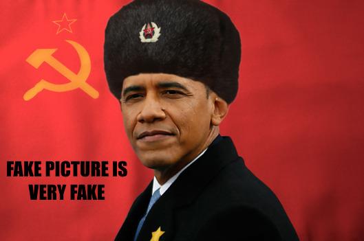 Fake Obama Picture